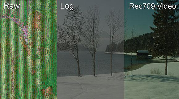 چه فرقی بین ویدیو Log و فایل خام Raw وجود دارد؟